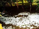 雪が降ってた日