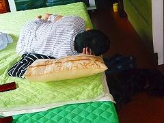 ヽ(。ゝω・)ノ☆;:*おはよう*:;☆