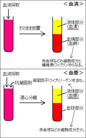 血漿と血清の違い