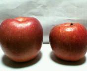 安曇野のりんご