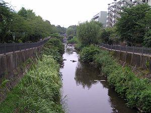 300px-Itachigawa_20080331214933.jpg