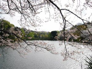 300px-Mitsuike_Park01.jpg