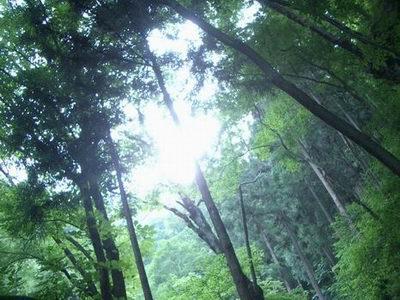 丸神の滝4
