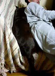 061224_sofa.jpg