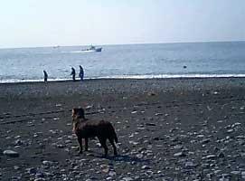 070504_hajimari.jpg