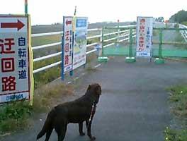 071119_ukairo.jpg