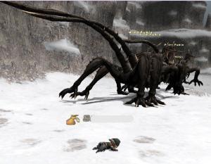 ドラゴンさまのお帰り~