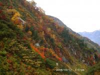 仙人谷の紅葉