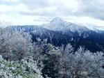 栗沢の下りから北岳