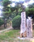 15蘇鉄山登山口