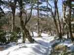 14 残雪の散歩道