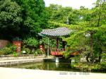 08 韓国の庭