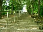 12 鶴見新山への階段