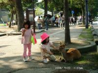 24 子供と鹿