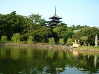 39 猿沢の池と五重塔