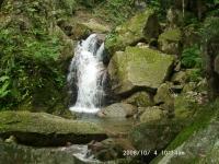 01 魚止の滝