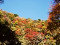 04梅ヶ瀬渓谷1