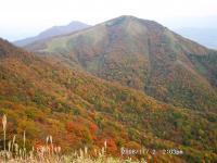 09 8合目から中・下蒜山