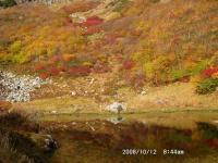 平の池と紅葉
