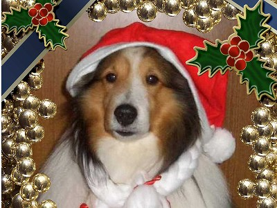 2クリスマスカード-2