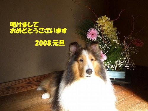 コピー ~ CIMG7572