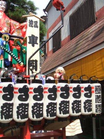 秋祭り さくら山車 003