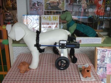 岩手 ペット 介護用品 車いす 車椅子
