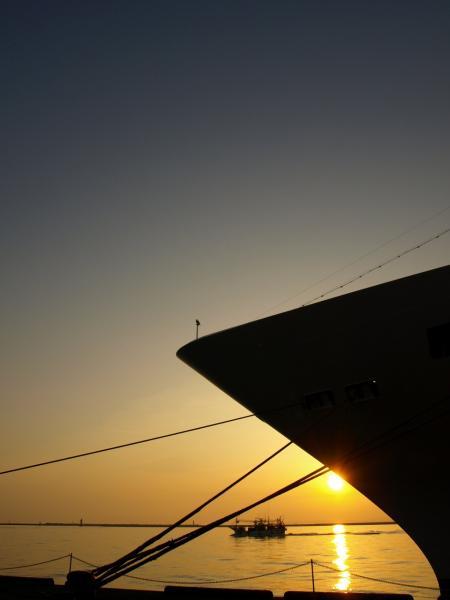 海。夕陽。カモメ。船~。。