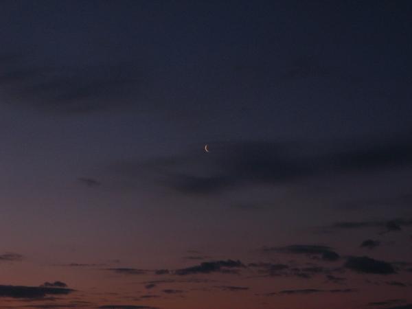 月だぁ。。。