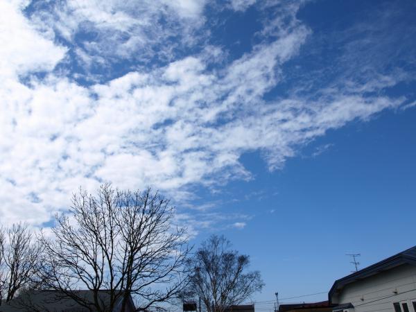 久しぶりの青い空~