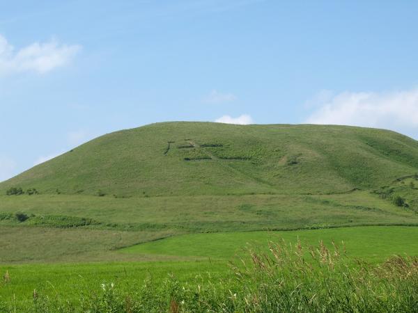 帰り道、小高い丘に牛の文字~