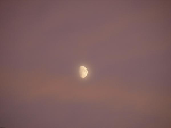 霞ピンク色の空に月。。。