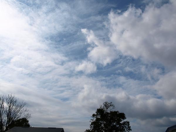 雲いろいろ。。