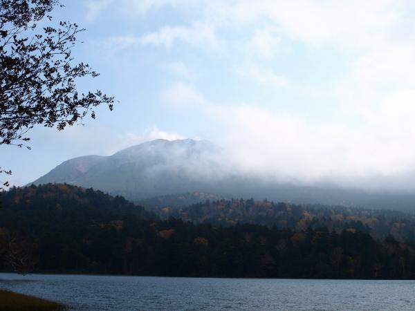 霧、風、波立つ湖面、落葉。。。。。ううう~
