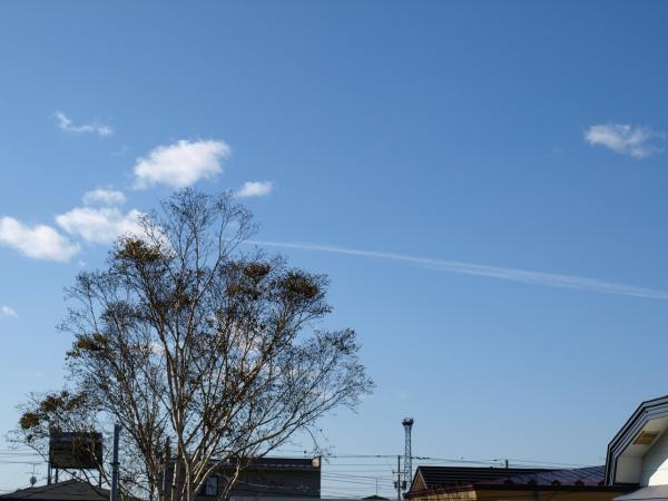飛行機雲みたいな。。。