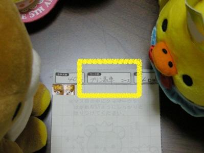 DSCN3254 400300