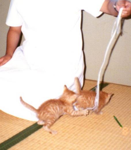 看護婦さんに遊んでもらうピッピとトム