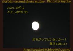 二番目の小夜子の写真館♪0135