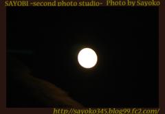 二番目の小夜子の写真館♪0139