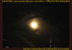 二番目の小夜子の写真館♪0140