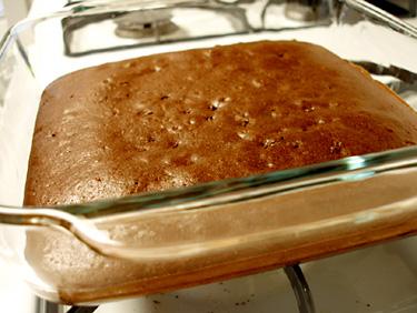BrownieY2.jpg