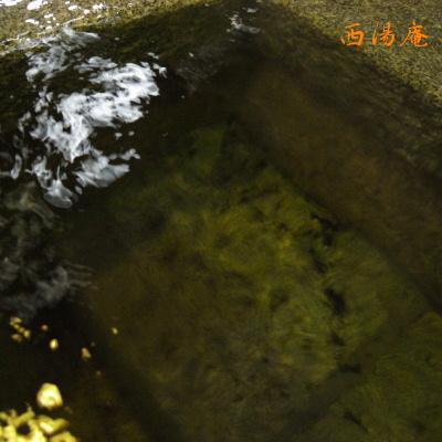 紫尾区営07_05.04