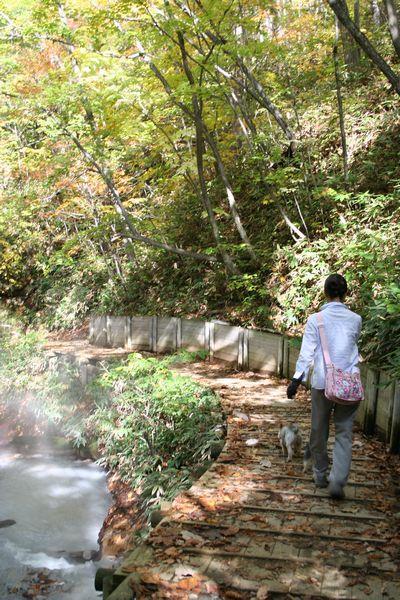 051021-jigokudani1.jpg