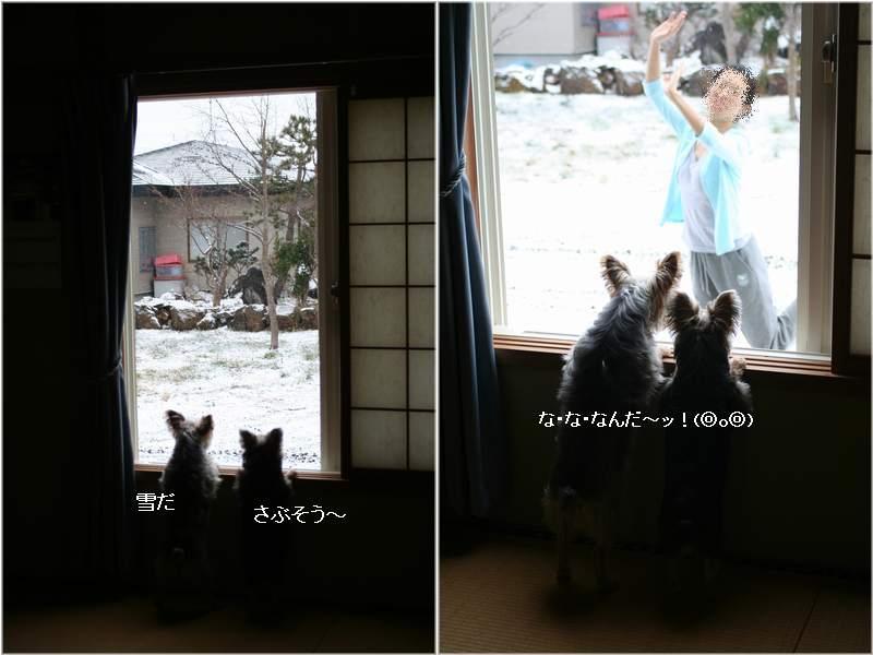 051202-yuki12.jpg