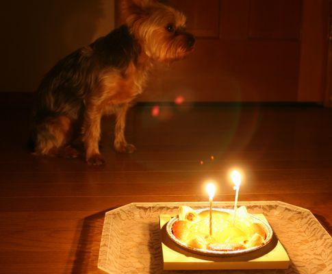 060117-birthday1.jpg