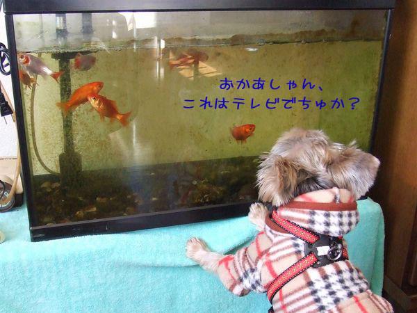 060118-friend1.jpg