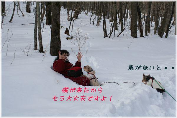 060125-yuki2.jpg