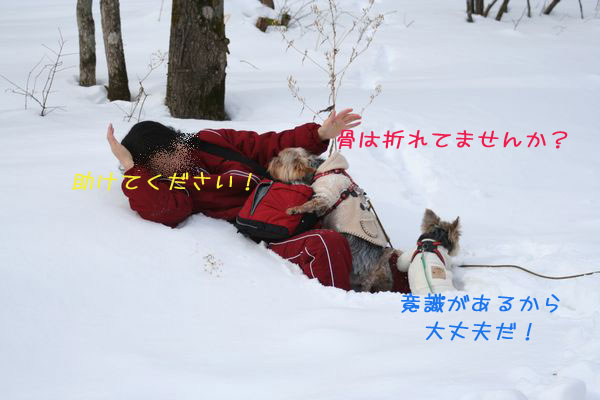060125-yuki3.jpg