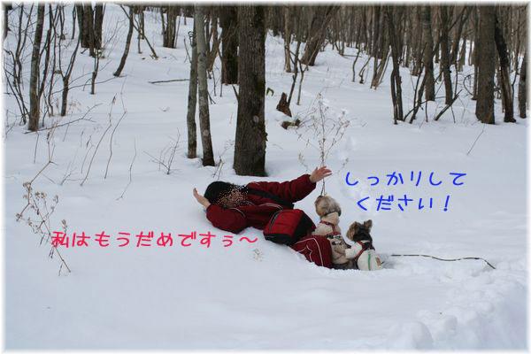 060125-yuki4.jpg
