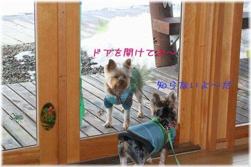 060129-haginosato2.jpg